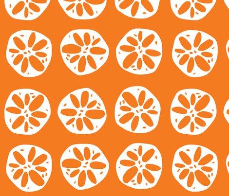 Rrlotusroot_orange_large_shop_preview