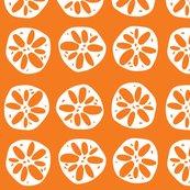 Rrlotusroot_orange_large_shop_thumb