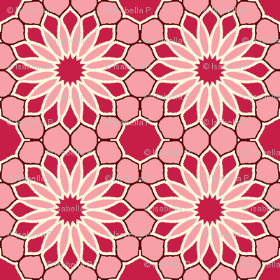 Rock Daisies - Rose Red