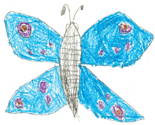 Rzach_butterfly_ed_thumb