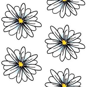 Daisy-blu