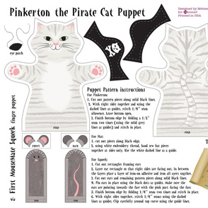 Pinkerton the Pirate Cat