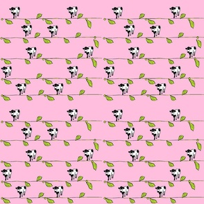 Pink Cow Plant
