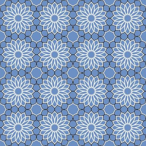Rock Daisies blue