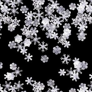Snowflakes 2 (Storm)