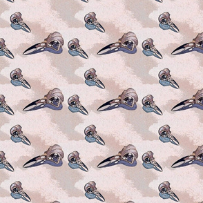 Crow Skulls