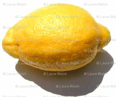 Rlemon-law-pic_preview