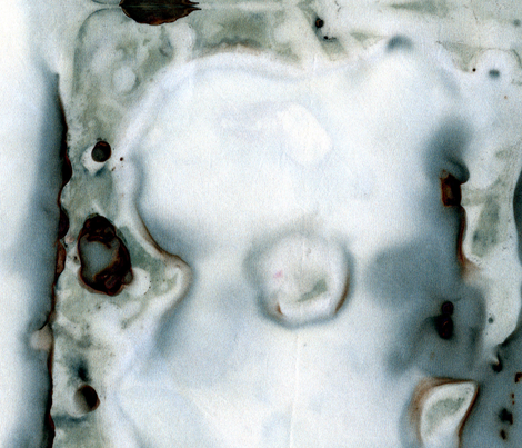 Mysteria fabric by tangerinesamurai on Spoonflower - custom fabric