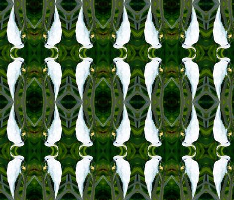 cockatoo fabric by mjw23 on Spoonflower - custom fabric