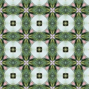 Appleblossom pattern III