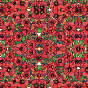 Kaleidoscope of Poppies