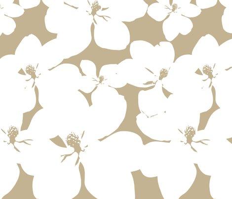Rr3_yard_magnolia_little_gem_repeat-1_shop_preview