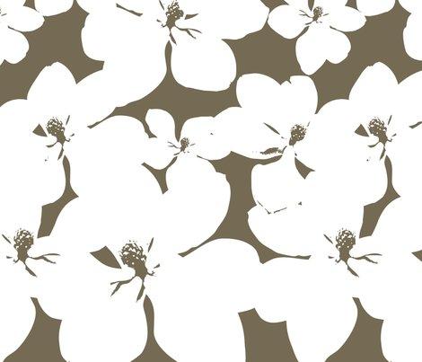 Rr3_yard_magnolia_little_gem_dark_spice-1_shop_preview