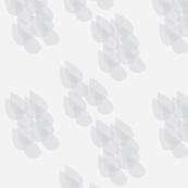 Leaves_cluster6