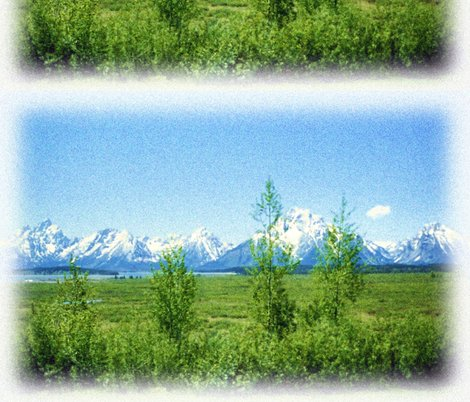 Rspring_tetons_seurat_1_shop_preview