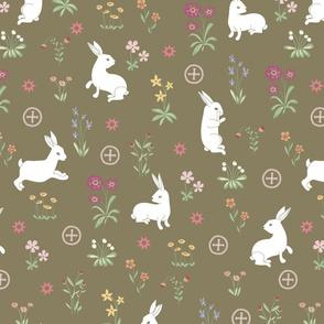 la_demoiselle_aux_lapins