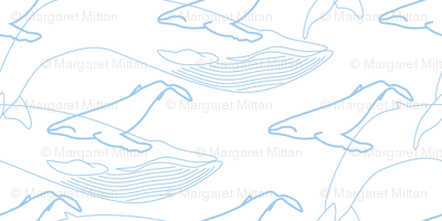 Whales, BLue