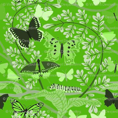 Butterfly_Pattern_green