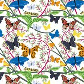 Rbutterfly_pattern_crp_basic_shop_thumb