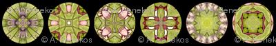Rosalie's Disks