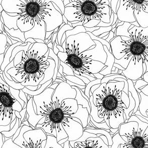 White Anemones