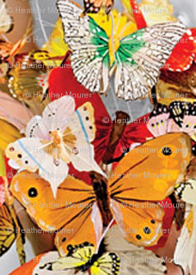 Rbutterflycrop_ed_ed_preview