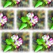 Rcosmic_blossoms_shop_thumb