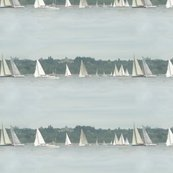 Rrsailboats_final_shop_thumb