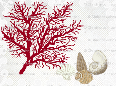 Red Coral and sea shells / bordered