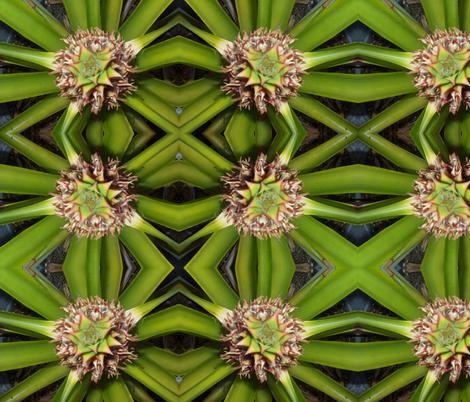 Piña fabric by travisina on Spoonflower - custom fabric