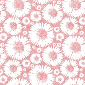 Retro Summer Daisy - Watermelon