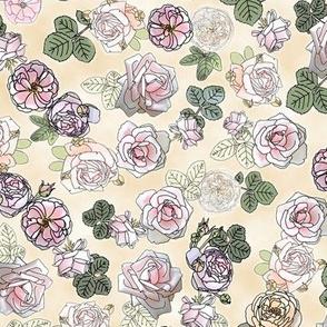 English Roses Cream