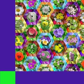 june flowers quilt