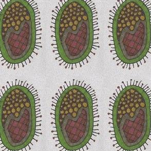 autumncirclepladbacterium