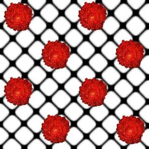"""""""Redbell"""" Fishnet"""