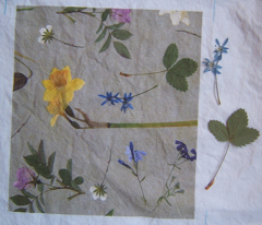 Rrr0_dried-flowers-3_comment_19081_preview