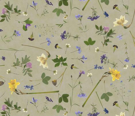 pressed flowers fabric by weavingmajor on Spoonflower - custom fabric