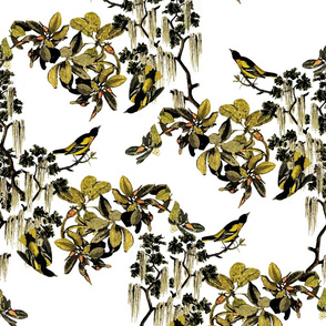 PRINT_Finches_Flat
