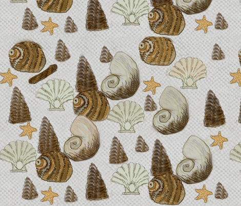 Sea shells  / Dk fabric by paragonstudios on Spoonflower - custom fabric