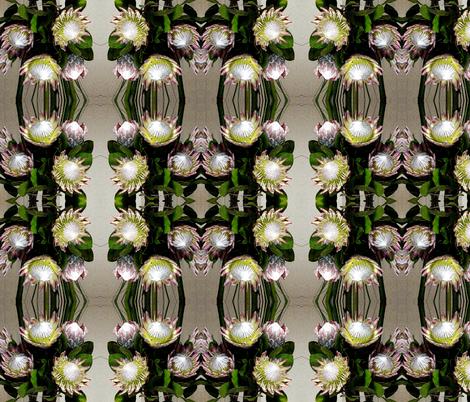 Proteas - wonderful dramatic flowers fabric by engelstudios on Spoonflower - custom fabric