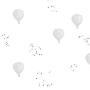 Ballons and birds