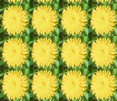 Paraded Dandilions fabric by frances_hollidayalford on Spoonflower - custom fabric