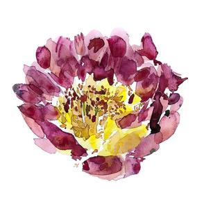 C'EST LA VIV™ Garden Lark Collection_Single Peony