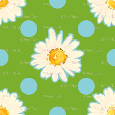 Daisies and Dots - Chlorophyll