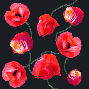 poppies_on_charcoal