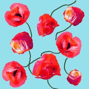poppies_on_sky