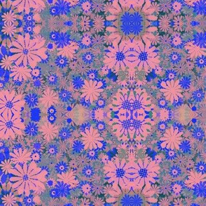 pink and blue Daisy