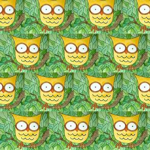 Hoot-Owls