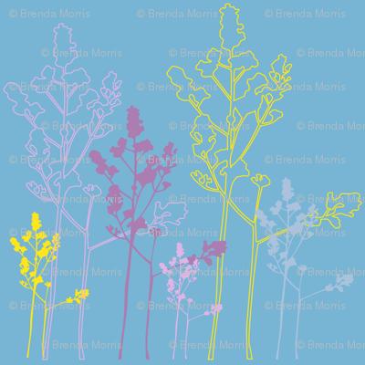 MEADOW_FLOWERS