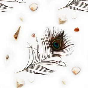 nautical peacock